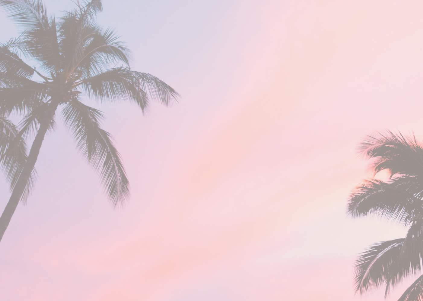 Sunset palm tree background